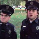 Полицейский рассол
