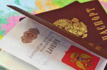 Сколько украинцев получили российское гражданство за 5 лет