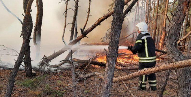 На Луганщине очередной поджог: детонируют снаряды, огонь подступает к электроподстанциям