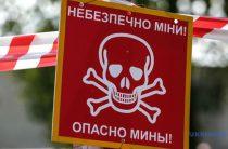 Організації з Британії та США розмінували 8 ділянок на Донеччині