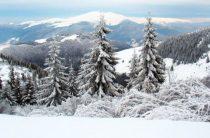 Где переселенцам отдохнуть в Карпатах зимой