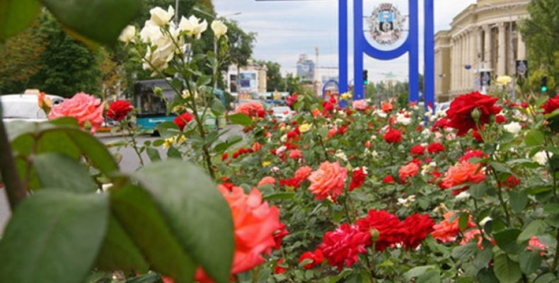 Цены на цветы 8 Марта в Донецке