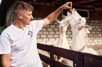 Переселенці з Луганська «з нуля» заснували успішну справу